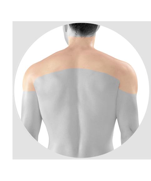 photo of men Neck, Shoulders, Arms